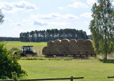 Bioranch_Landwirtschaft_Ökolandbau074