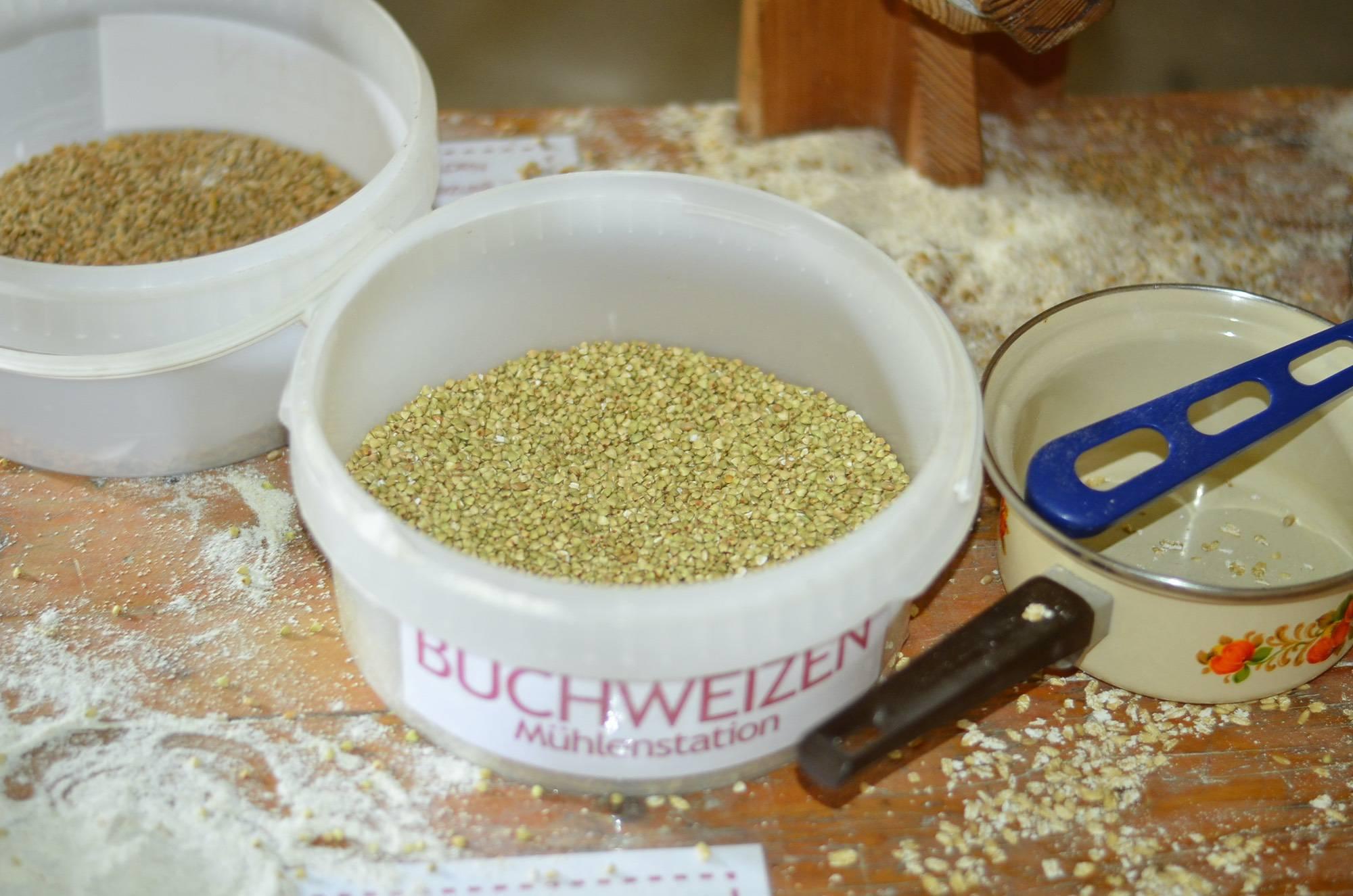 bio-ranch-landurlaub-landerleben-bioerlebnistag-04